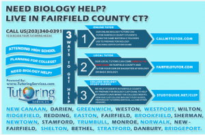 biology tutoring services in fairfield county ct